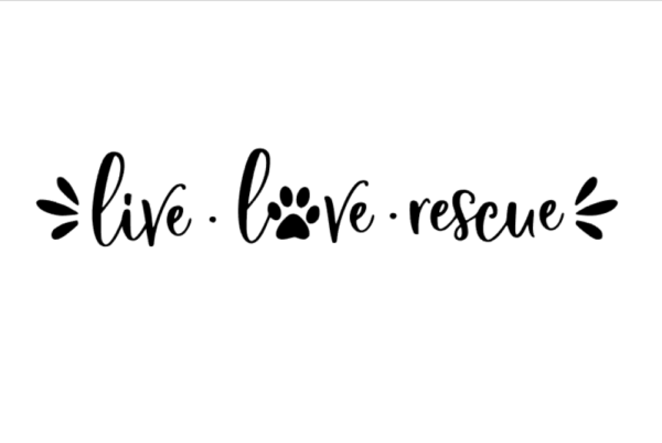 Live love rescue decal